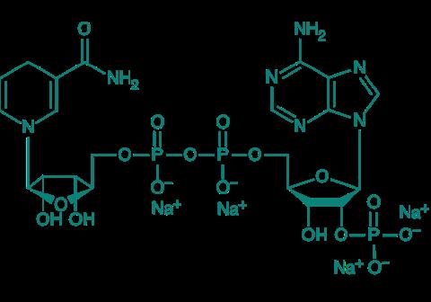 NADPH Na4, 95%