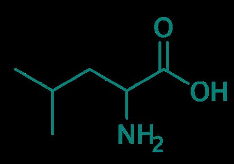 DL-Leucin, 98%