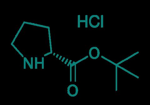 H-D-Pro-OtBu · HCl, 98%