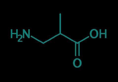 DL-3-Aminoisobuttersäure, 95%