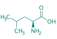 L-Leucin, 98%