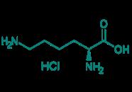 L-Lysin Hydrochlorid, 98%