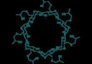 2-Hydroxypropyl-beta-cyclodextrin, 98%
