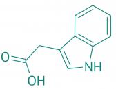 Indol-3-essigsäure, 98%