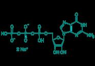 Guanosin-5'-triphosphat Dinatriumsalz, 85%