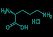 D-Ornithin Hydrochlorid, 98%