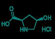 cis-D-4-Hydroxyprolin Hydrochlorid, 97%