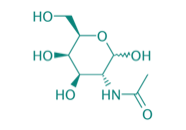 N-Acetyl-D-galactosamin, 95%