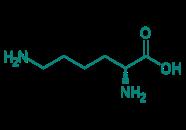 D-Lysin, 95%