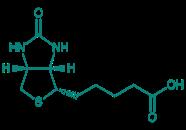D(+)-Biotin, 98%