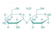 D-(+)-Maltose Monohydrat, 93%